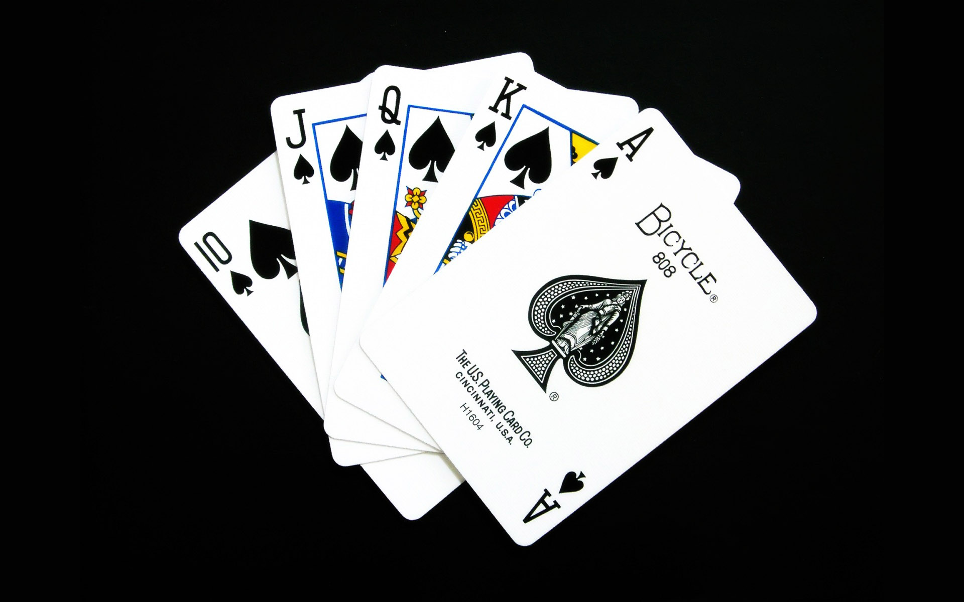 Card casino black casino gambling jack roulette